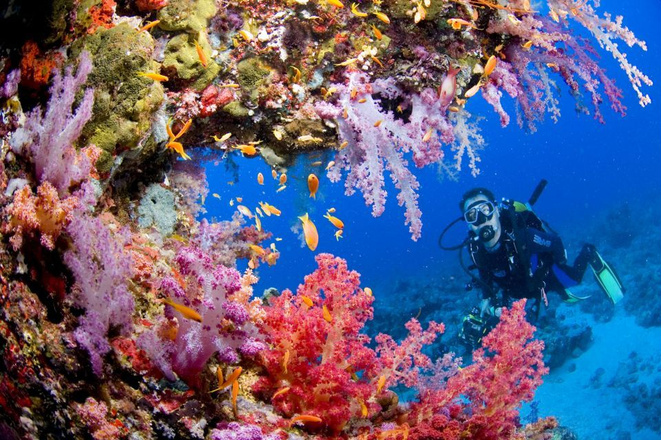 Cruising & Diving on Bali
