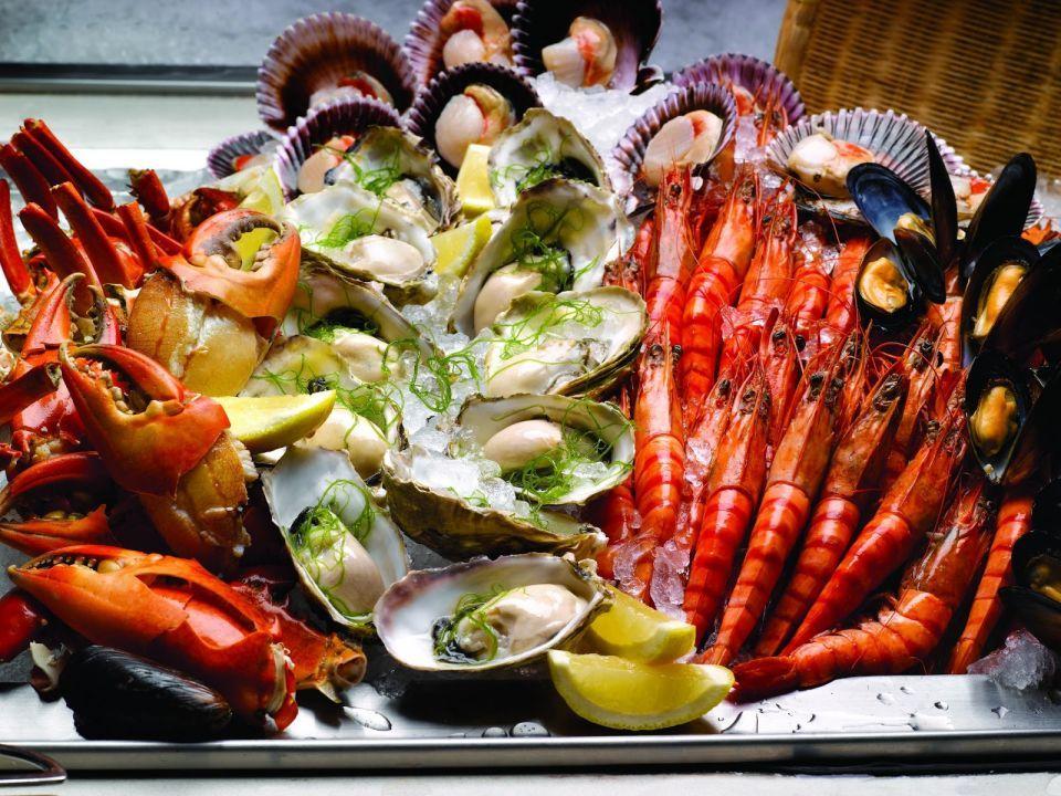 Gastronomy Paradise